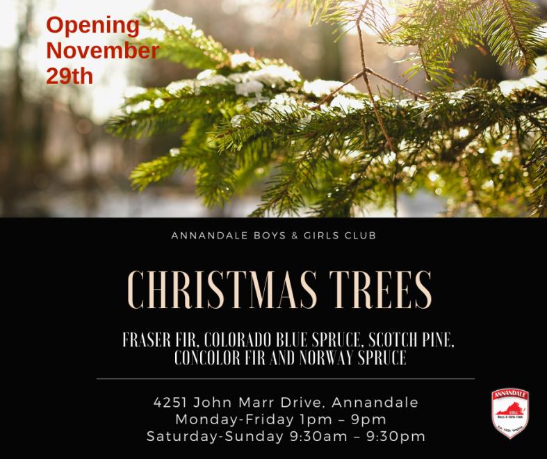 ABGC 2019 Christmas Trees